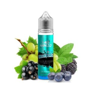 Lichid tigara electronica Flavor Madness 40ml - Blueberg