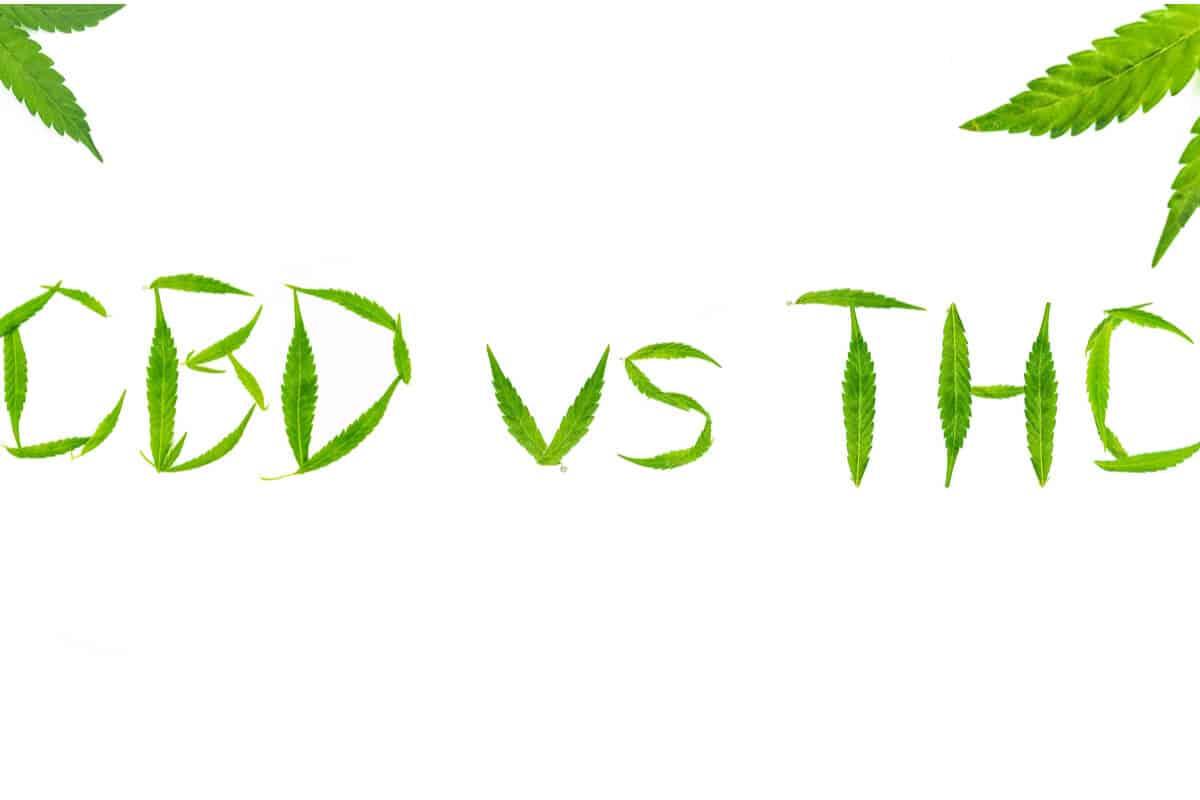 Diferenta dintre CBD si THC - tot ce trebuie sa stie vaperii despre cele doua componente!